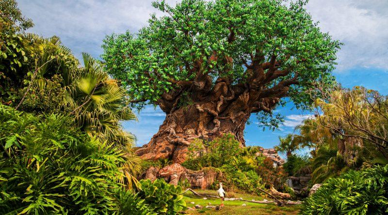 Experiencias en conmemoración del Día de la Tierra en el parque temático Disney's Animal Kingdom